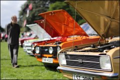 himley_ford_9