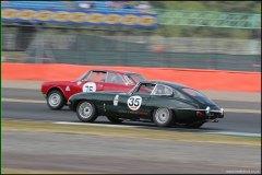 silverstone_classic_jaguar35_2