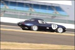 silverstone_classic_jaguar55