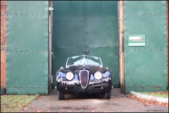 sunday_scramble_jaguar