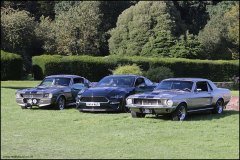 himley_ford_2