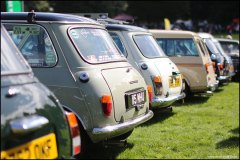 himley_mini_23