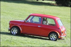 himley_mini_27