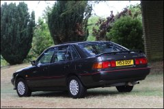 festival_of_the_unexceptional_toyota_carina