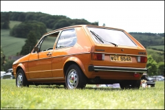 vw_stonor_park_vw_golf_11