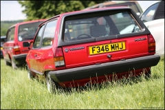 vw_stonor_park_vw_polo